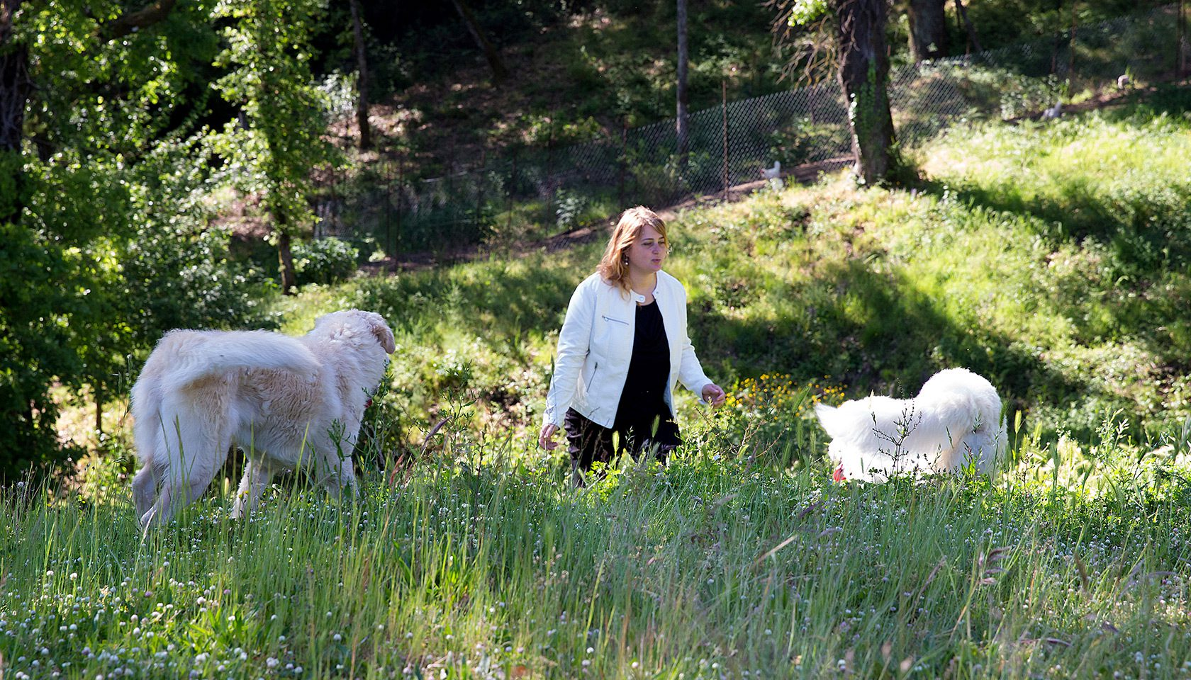 Laura Peri with dogs